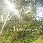 The Season of Motherhood