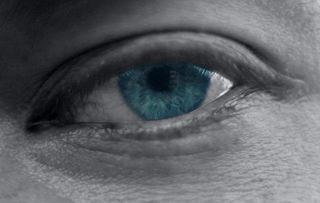 grayeye